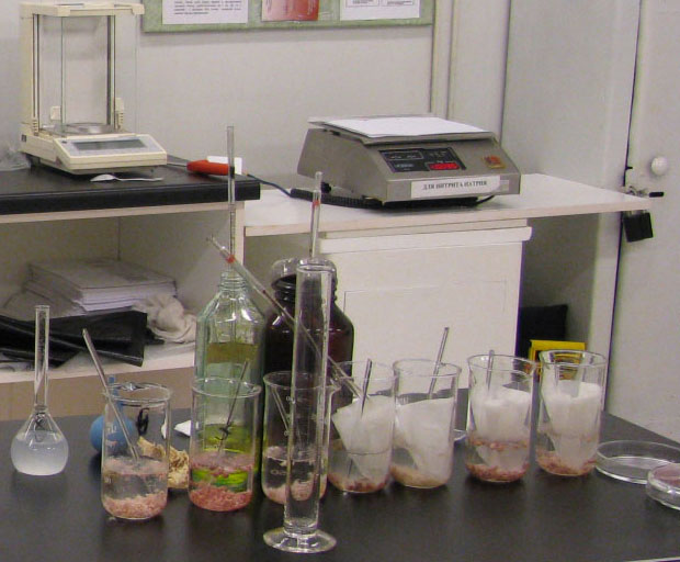 Вет сан оценка вареных колбас при использовании различных добавок  Вет сан оценка вареных колбас при использовании различных добавок Реферат